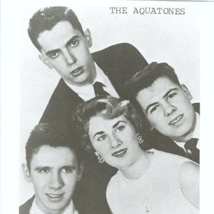 Image for 'The Aquatones'