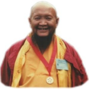 Image for 'Lama Gangchen Rinpoche'