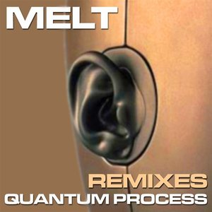 Immagine per 'Quantum Process Remixes'