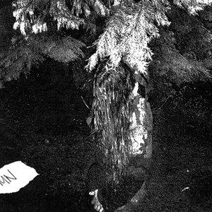 Image for 'Forbidden Citadel of Spirits'