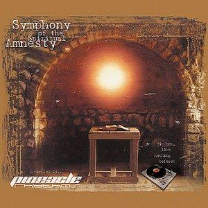 Image for 'Symphony of the Spiritual Amnesty (SOTSA)'