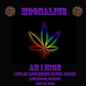 Imagem de 'Am I High (Live)'