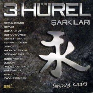 Image for '3 Hürel Şarkıları: Sonsuza Kadar'