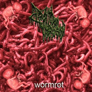 Image for 'Wormrot'
