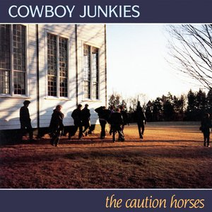 Image for 'The Caution Horses'