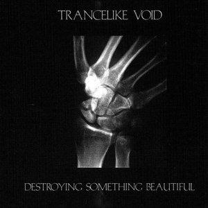 Imagem de '2007 - Destroying Something Beautiful'