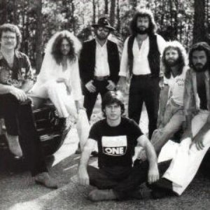 Image pour 'Allen Collins Band'
