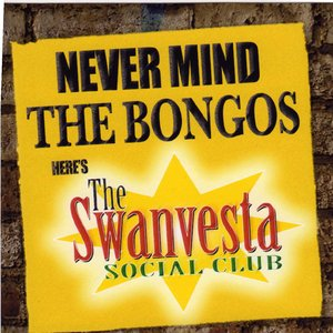 Image for 'Never Mind the Bongos'