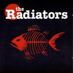 Image for 'The Radiators'