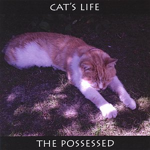 Image for 'Cat's Life'
