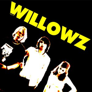 Image for 'Willowz'