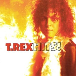 Image for 'The Very Best Of T.Rex'