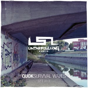 Image for 'Survival Waves'