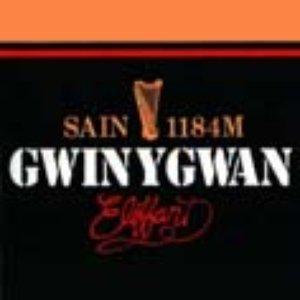 Image for 'Gwin Y Gwan'