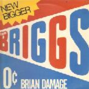Image for 'brian damage'