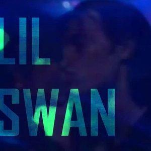 Bild für 'LIL SWAN'