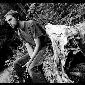 Bild för 'Voice of the Seven Woods'