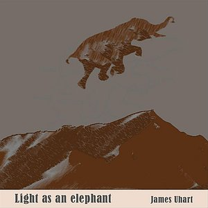 Image for 'Light As An Elephant'