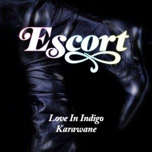 Immagine per 'Love in Indigo b/w Karawane (Single)'