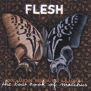 Image for 'The Lost Book of Malchus'