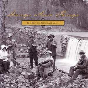 Image for 'Strings And Things - The Best In Bluegrass Vol. 1'