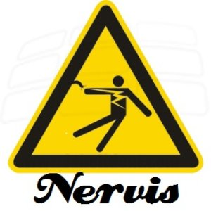 Image for 'Nervis'