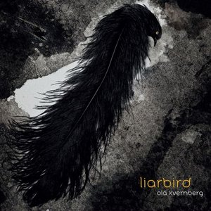 Image for 'Liarbird'