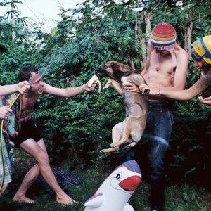 Image for 'La Ola que quería ser Chau'