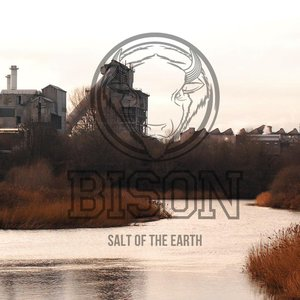 Image for 'Salt of the Earth'