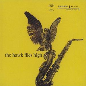 Bild für 'The Hawk Flies High'