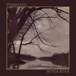 Image pour 'Bitter River'