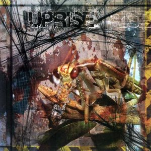 Image for 'Uprise'