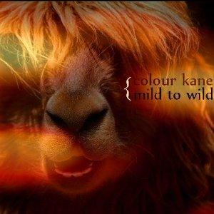 Immagine per 'Mild To Wild'