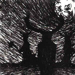 Image for 'Transcendant'