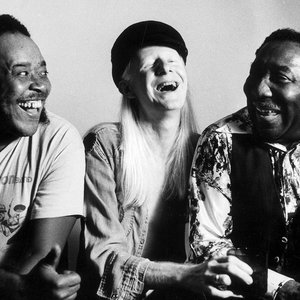 Imagem de 'Muddy Waters, Johnny Winter & James Cotton'