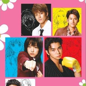 Image for '花より男子(だんご)オリジナル・サウンドトラック'