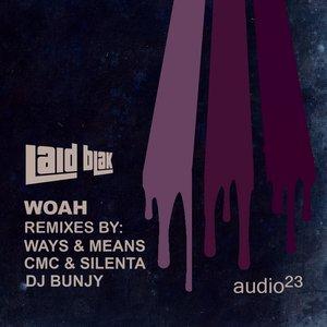 Image for 'WOAH(The Remixes)'