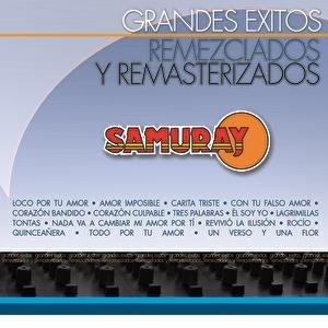 Image for 'Grandes Éxitos Remezclados Y Remasterizados'