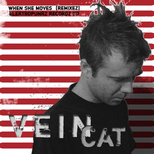 Image for 'When She Moves [Remixez]'