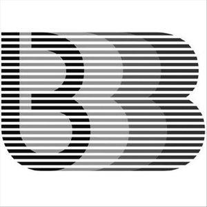Bild für 'Bruiser'