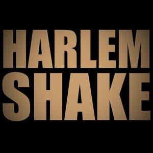 Image for 'Harlem Shake'