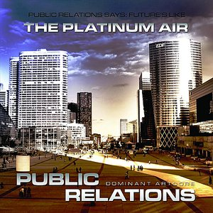Image for 'The Platinum Air'