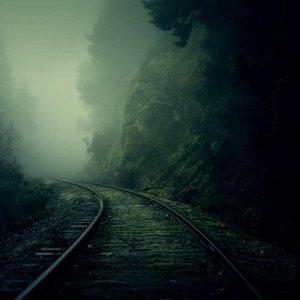 Immagine per 'Forest Fog'