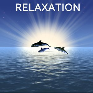 Image for 'Relaxation'