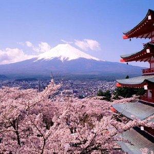 Image pour 'Japan Jazz'