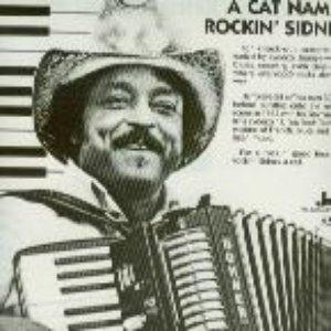 Bild für 'Rockin' Sidney'