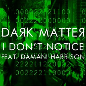 Image for 'I Don't Notice (feat. Damani Harrison)'