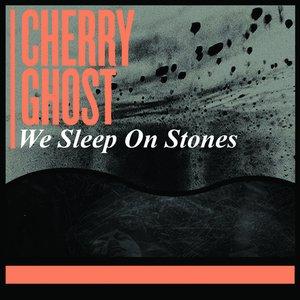 Image for 'We Sleep On Stones'