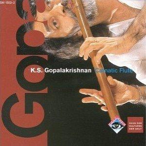 Immagine per 'Carnatic Flute'
