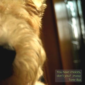 Image for 'You have choices,don't you?[promo]'